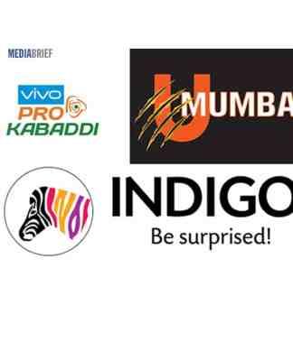 image-indigo-paints-is-Title-sponsor-for-2-years-for-U-Mumba-at-Vivo-Pro-Kabaddi-2018