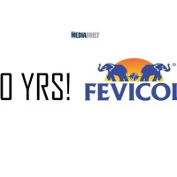 Fevicol previews brilliant ad campaign to commemorate 60 years