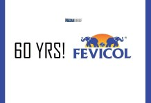 image-Fevicol-60-years-camnpaign-mediabrief