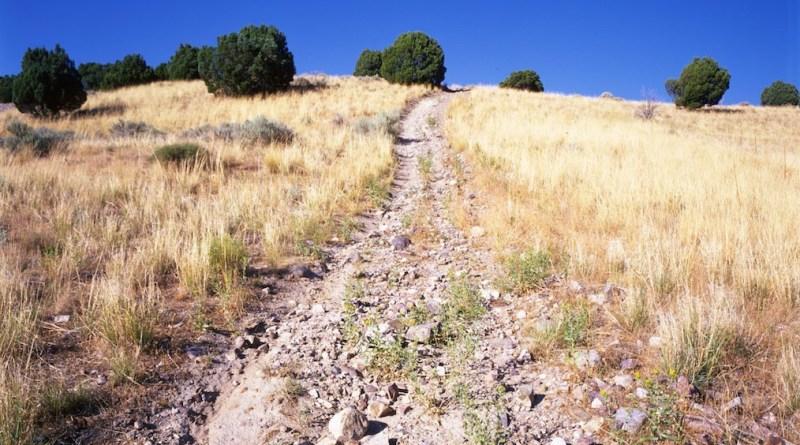L'important, c'est le chemin ©rawhead sur Flickr.com