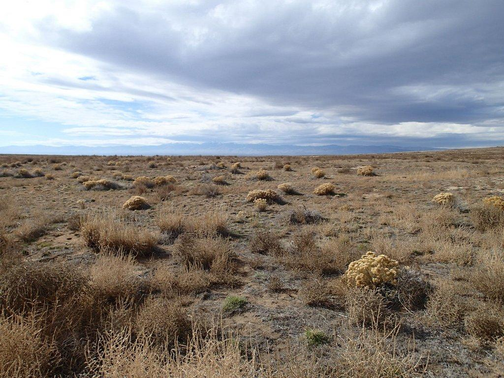 Several Idaho Native American Tribes Claim Found Bones