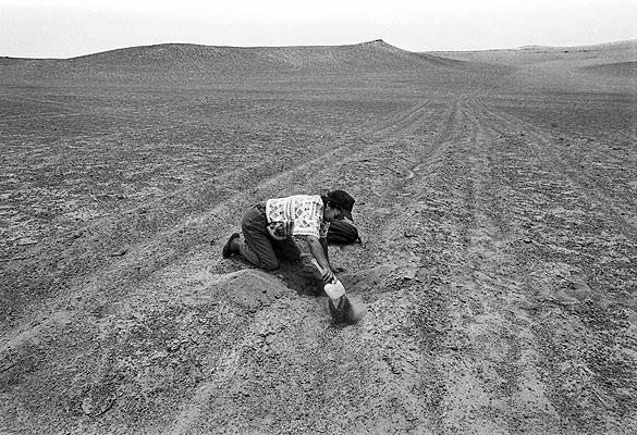 Image result for atacama desert women digging