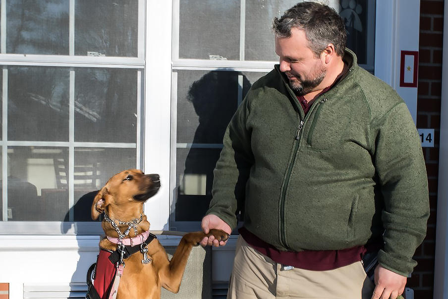 Can Service Dogs Help Veterans With PTSD The VA Is