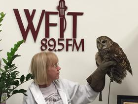Sue and Kona, a barred owl visit WFIT.