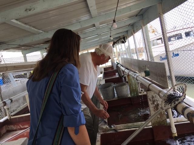 Roland Bradshaw leads Kirsten Webb and Hayley Hartman through his crab shack at Rhodes Point