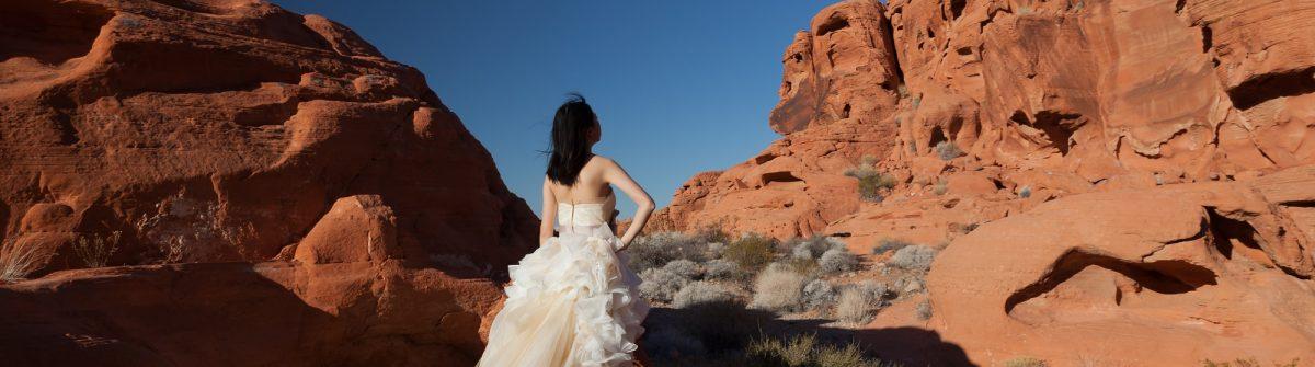 Wie Viel Kostet Es In Vegas Heiraten Finde Es Hier Heraus
