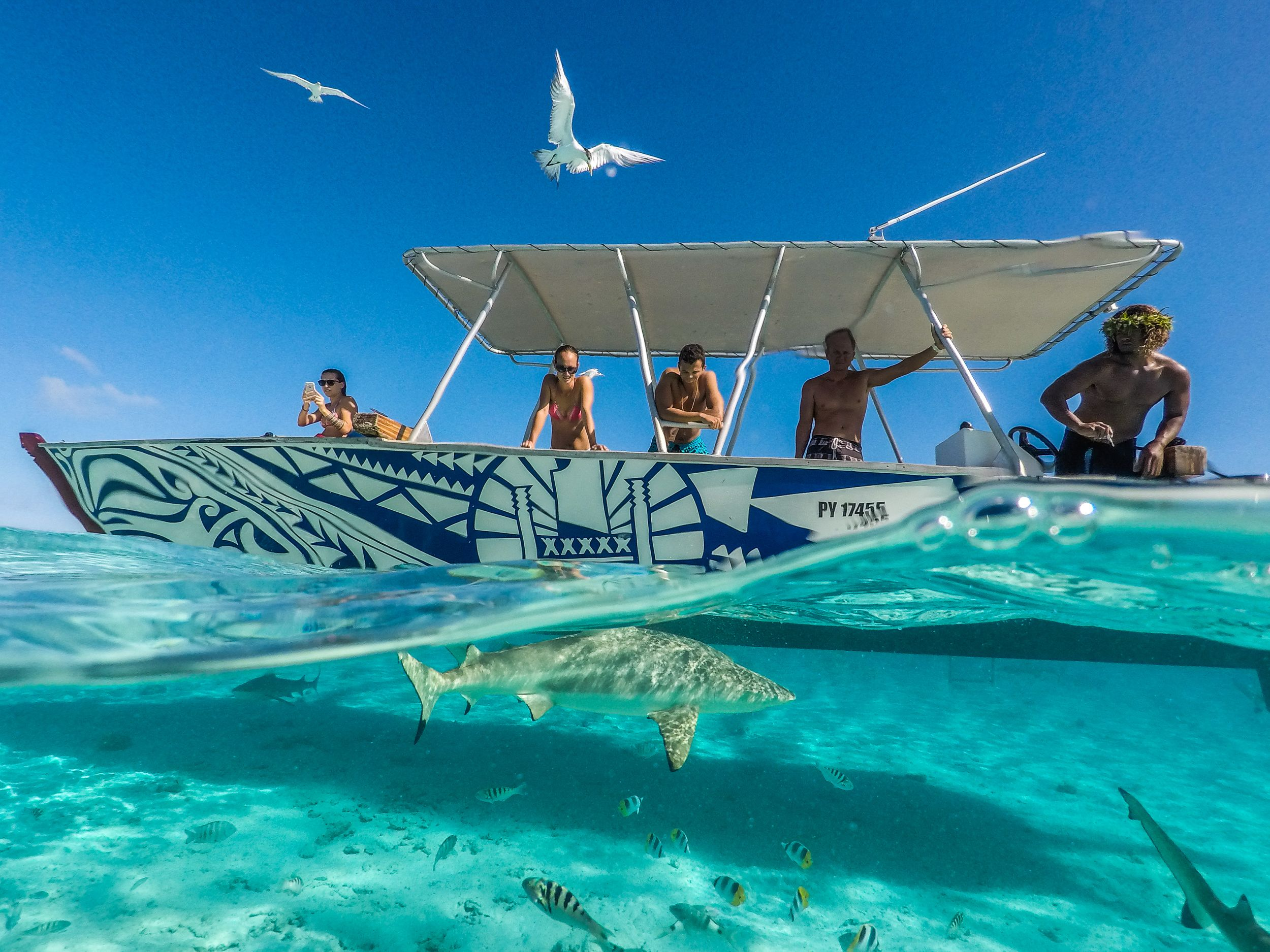 Things To Do in Bora Bora 2019 : Top Attractions ...