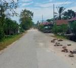 Jalanan di desa Morikana