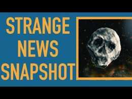 Skull Asteroid Will Just Miss Halloween