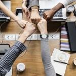 Startup Teams
