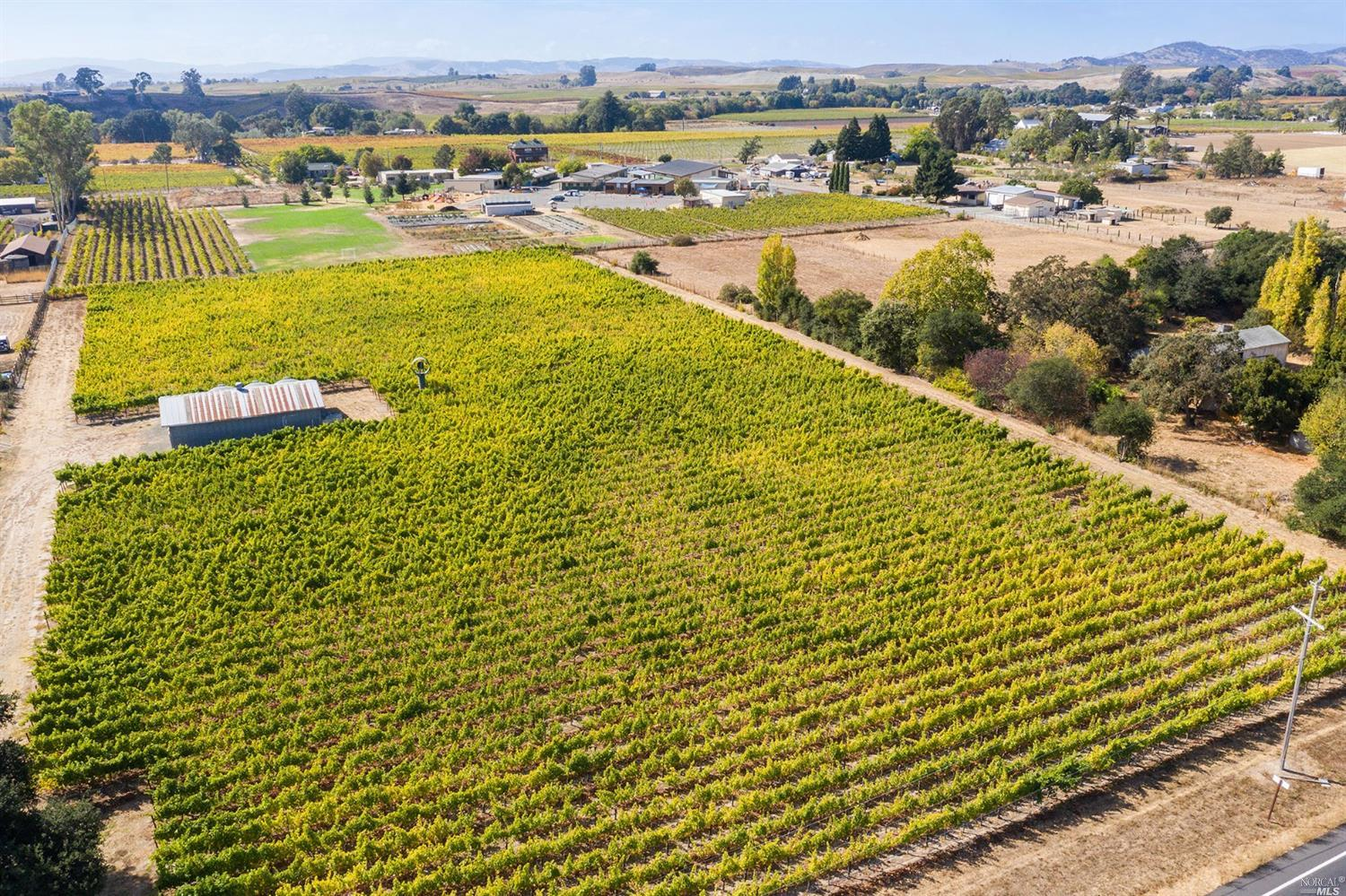 Investment opportunity! Producing vineyard and homesite potential with panoramic vineyard views located in coveted Carneros AVA in Napa. The parcel is 4.68 acres with 3.67 net acres of Sauvignon Blanc vines.  Property includes a producing well and barn ideal for workshop and/or vineyard equipment. Inquire for vineyard details.