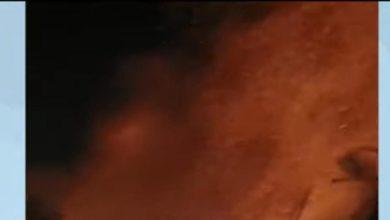 Photo of തമിഴ്നാട്ടിൽ പടക്കക്കടയിൽ പൊട്ടിത്തെറി ; അഞ്ചു പേർ മരിച്ചു ; ആറ് പേരുടെ നില ഗുരുതരം