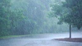 Photo of പത്തനംതിട്ട ജില്ലയിൽ ശക്തമായ മഴ; മൂന്നിടത്ത് ഉരുൾപ്പൊട്ടൽ
