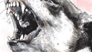 Photo of വാക്സിൻ ഫലിക്കുന്നില്ല; ഈ വർഷം പേവിഷബാധ സ്ഥിരീകരിച്ച മുഴുവൻ പേരും മരിച്ചു; ഞെട്ടിപ്പിക്കുന്ന വെളിപ്പെടുത്തലുമായി കേരള സർക്കാരിന്റെ ഔദ്യോഗിക കണക്ക് പുറത്ത്