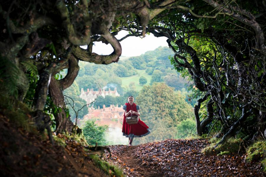Into the Woods / Disney