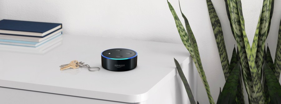 Echo Dot Black Bookshelf