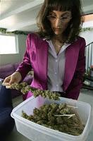 new mexico to legalize medical marijuana