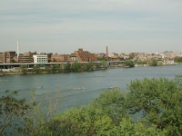 potomac river filled with animal-killing chemicals