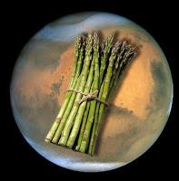 soil on mars good for asparagus