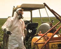 pesticides persist in ground water