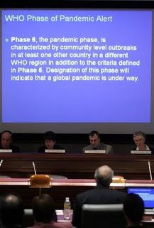 swine flu updates: theories, queries & phase 6