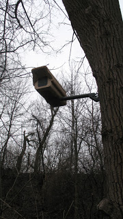 US forest service admits putting cctv on public lands