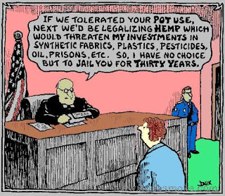 marijuana busts 'where the money is' for cops