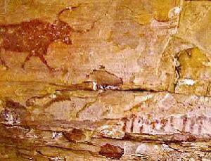 spanish murals show man used magic mushrooms 6,000 years ago