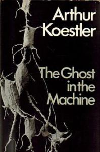 cover-image
