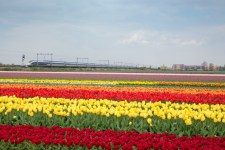 Eurostar to launch Amsterdam service in April
