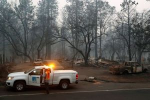 PG&E shares up 37 percent on report regulator does not want bankruptcy