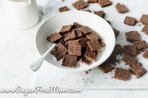 Keto Chocolate Toast Crunch Cereal
