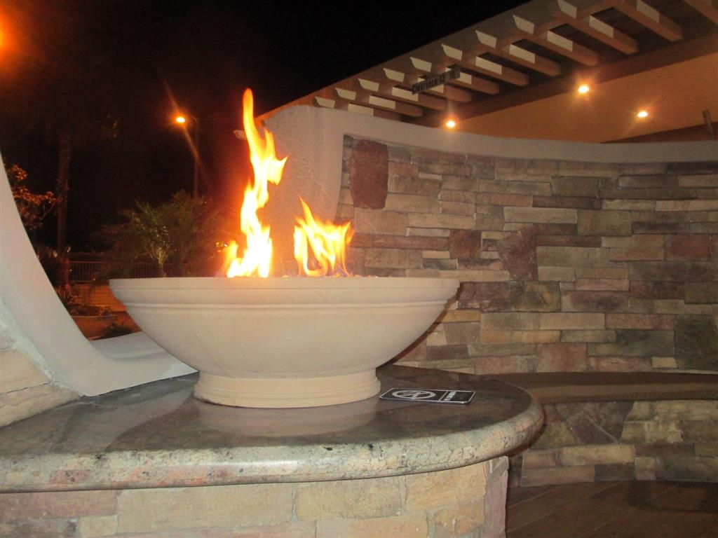 Va Non Vented Fireplace Acknowledgement Form