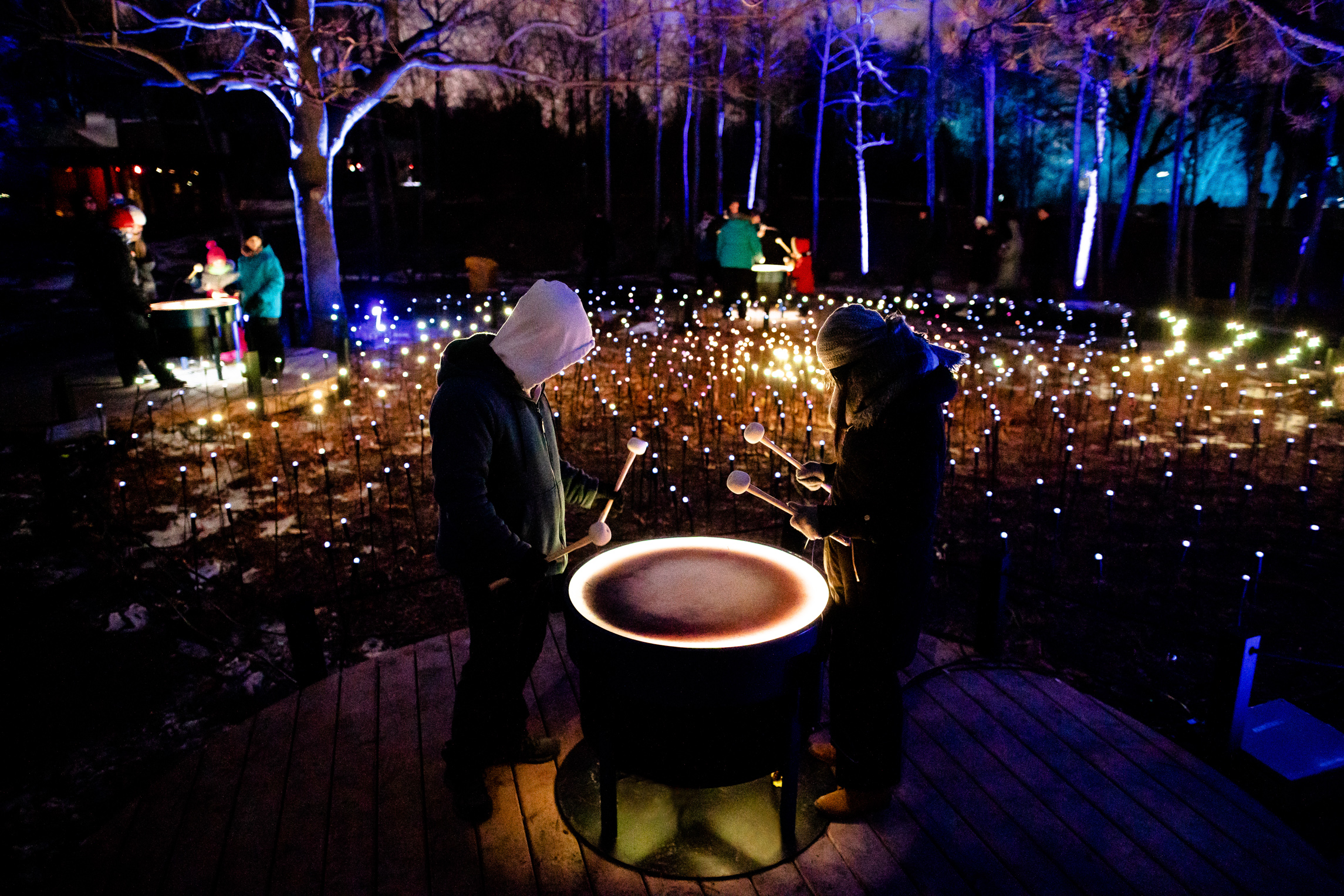 Terra Lumina Opens At The Toronto Zoo Moment Factory