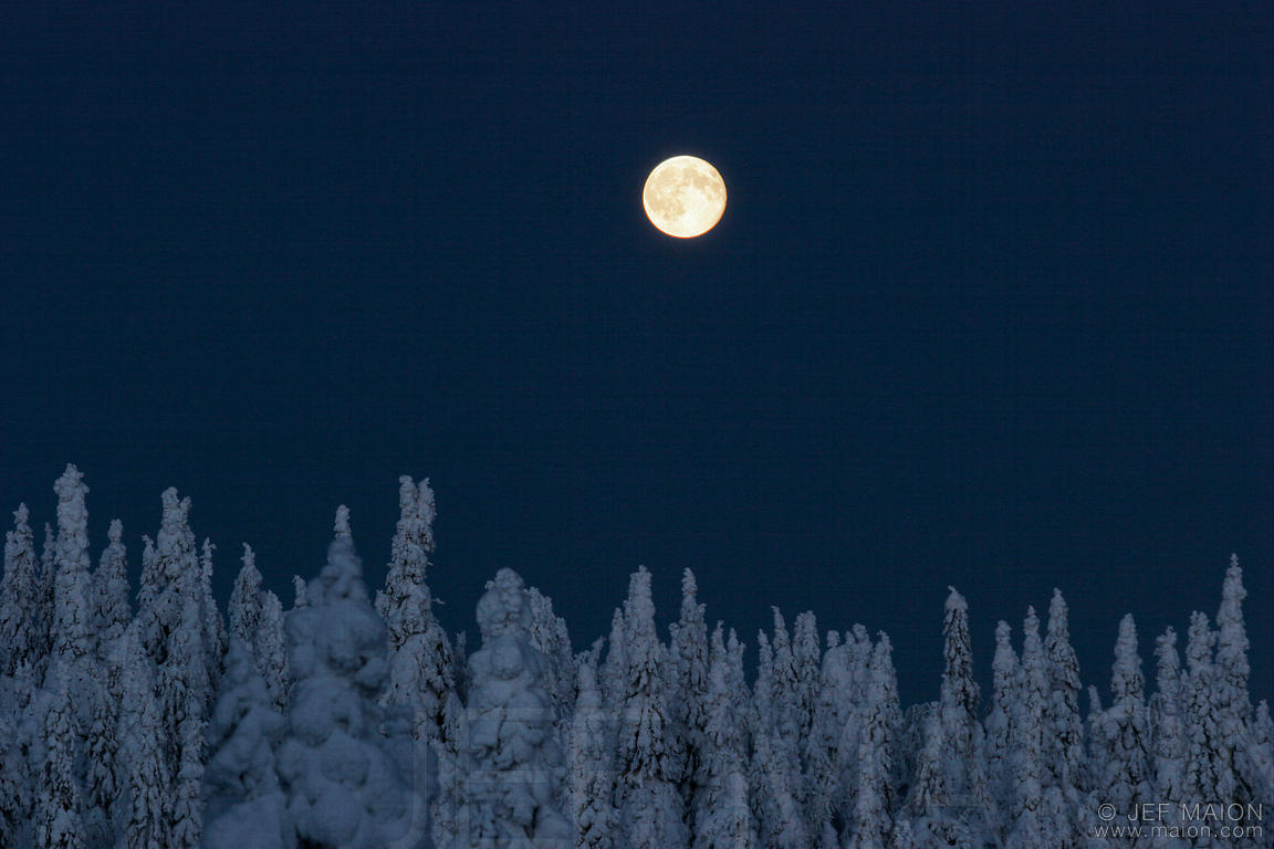 December – Long Nights Moon   A Year And A Day