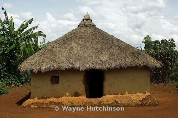 Image result for Traditional kenyan hut