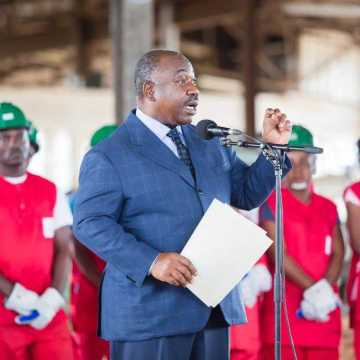 BOIS: Le Gabon impose aux opérateurs forestiers d'être certifiés FSC avant 2022