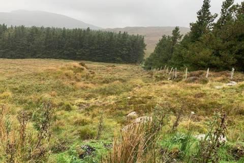 Shanvoley, Castlebar, Co. Mayo