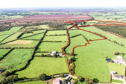 Agricultural Land & Forestry, Ferbane