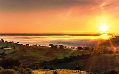 Bed & Breakfast 64 Hectares Land for Sale Alentejo