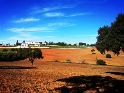 Equestrian farm and 3 star hotel for sale
