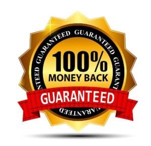 Guaranteed Best SEO Service Virginia http://NetViZual.com