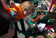 """James Starr, 16 months, grabbed at hand puppets for sale at Stony Brook University's Earthstock festival. """"It's like playing 52 card pickup with him,"""" his mother joked. Photo by Trevor Christian. (April 25, 2014)"""