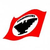 The logo of Cesar Chavez' union, United Farm Workers.