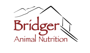 Graphic Illustration Logo design for Bridger Animal Nutrition Bozeman Montana