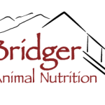 Graphic Illustration Logo design for Bridger Animal Nutrition Bozeman Montana