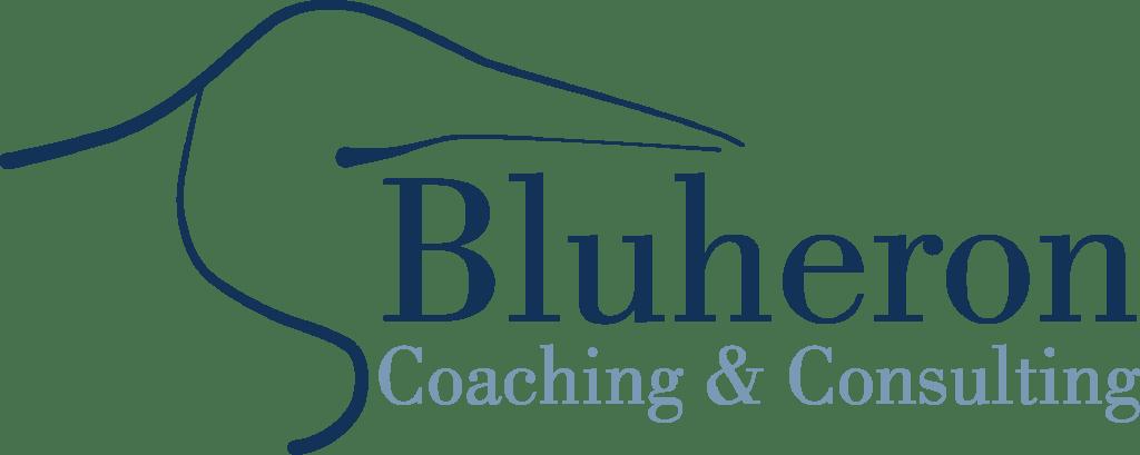 Logo Design for Consulting Company Bozeman Montana