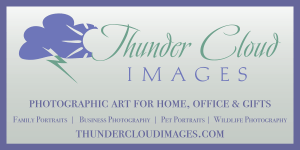 Vinyl 3 foot by 6 foot Banner Design for Bozeman Photographer Business