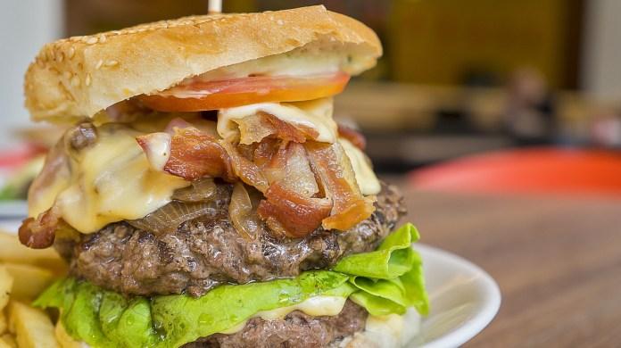 High fat diet, fast food, Burger