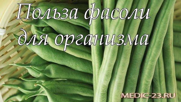 Польза фасоли для организма